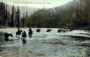 Locksaw River - Lewiston, Idaho ID