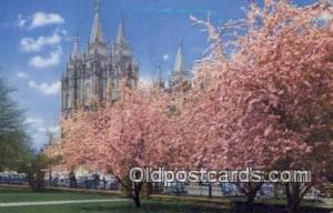 Mormon Temple, Salt Lake City Utah USA Religion, Religious, Old Vintage Antiq...