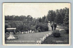 St Paul MN-Minnesota, The Lotus Pond, Como Park, Vintage Postcard