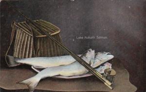 Maine Lake Auburn Salmon 1909