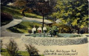 Lilly Pond, Rock Springs Park East Liverpool OH 1911
