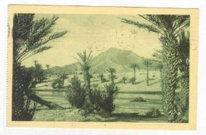 FIGUIG.-Riviere de la Zousfana, Algeria, PU-1925