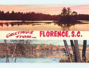 Unused Pre-1980 GREETINGS FROM - TWO VIEWS OF WATER SCENES Florence SC t4842
