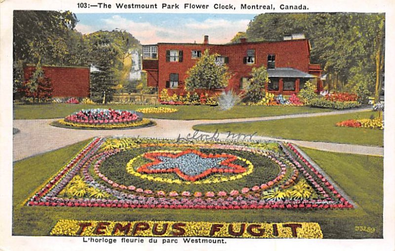 Floral Designs Post Cards Westmount Park Flower Clock Montreal, Canada Writin...