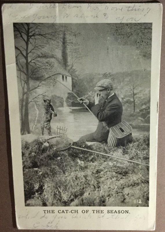 Vintage Postcard Cat-ch Of The Season Cat on Fishing Poll Fisherman