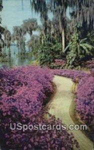 Azalea Lane - Cypress Gardens, Florida FL
