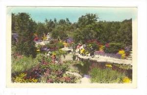 RP   Rock Garden, Hamilton, Ontario, PU-1946