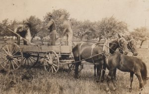 RP: Horsedrawn Wagon & workers , 00-10s