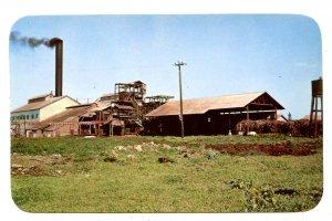 HI - Kahuku. Sugar Mill
