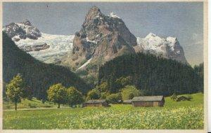 Switzerland Postcard - Rosenlaui Des Gschwandtenmaad - Ref TZ7652