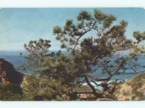 Pre-1980 TORREY PINES San Diego California CA W5460