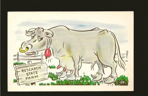 Research State Farm Comic Postcard Comic Cards C-84 Postcard Unused