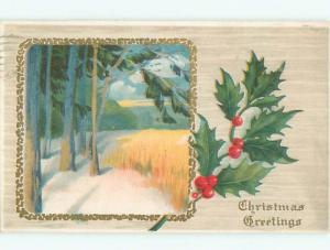 Divided-Back CHRISTMAS SCENE Great Postcard W9099