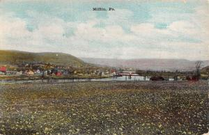 Mifflin Pennsylvania Scenic Waterfront View Antique Postcard K90991