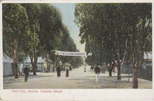AVALON , Catalina Island , California , 1900-10s ; Tent City