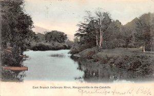 East Branch Delaware River Margaretville, New York Postcard