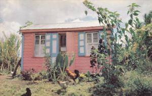 ST. JOHNS, Antigua, 1940-1960's; Gaily Painted Antigua House
