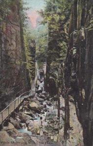New Hampshire White Mountain The Flume 1909