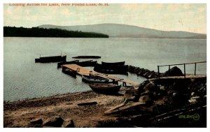 New Hampshire New Found lake