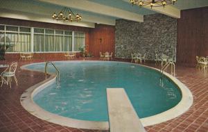 Swimming Pool , SKYLINE Hotel , TORONTO , Ontario , 1950-60s
