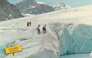 Canada Columbia Icefields Alberta