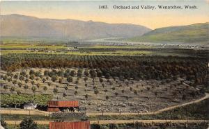 Wenatchee Washington~Orchard & Valley Bird's Eye View~Mountain Distance~c1910 Pc