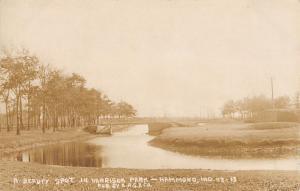 Hammond Indiana~Harrison Park~Rustic Foot Bridge~1908 Real Photo Postcard~RPPC