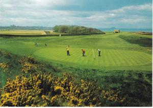 Post Card Scotland East Lothian Dunbar Golf Club 8th Green