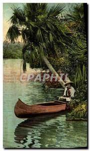 Old Postcard Cuba Paisaje tropical