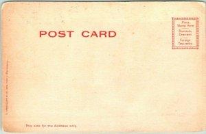 Vintage CONEY ISLAND New York Postcard Aerial Swings, LUNA PARK c1900s UNUSED