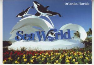 P712 Continental size approx (4 X 6) sea world killer whales orlando florida
