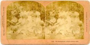 SV Bride faints,Bridesgroom is 5mins late 1897