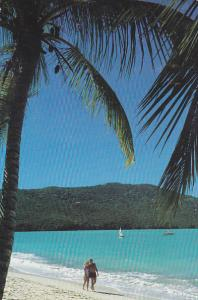 Barbados Tranquil Island Scene