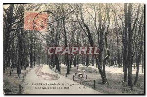 Old Postcard Paris's Bois de Boulogne in hives A Allee in the Snow