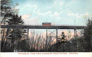 ny-schenectady Ry Troley Viaduct Unused