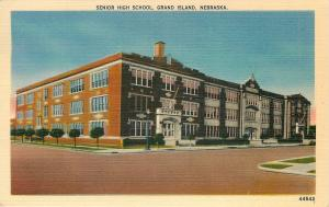 Grand Island NE~Long Short Tree Line by Senior High School~1940s~Postcard