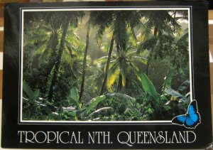 Australia Queensland Tropical North - posted 1992