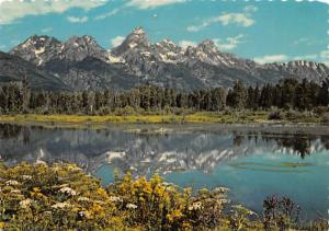 Black Tail Pond - Grand Teton National Park, Wyoming