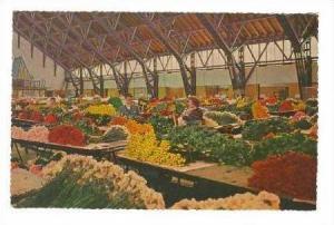 AALSMEER, Netherlands, Interior Flower Auction, 00-10s
