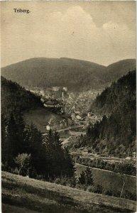 CPA AK Triberg- GERMANY (904654)