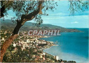 Postcard Modern Flower Riviera Sanremo Panorama from West