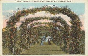 HARTFORD, Connecticut, 1900-10s; Crimson Ramblers, Elizabeth Park, Rose Garden