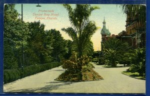 Promedade Tampa Bay Hotel Florida fl old postcard