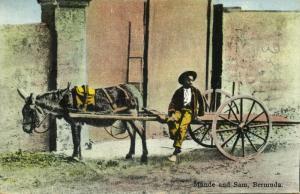 bermuda, Mande and Sam, Donkey Cart (1931)