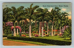 Miami FL-Florida, Royal Palm Lined Drive, Floral Trellis, Linen c1948 Postcard