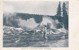 Scene in Yellowstone National Park , Wyoming, 00-10s