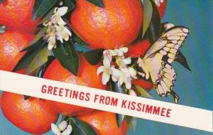 Florida Greetings From Kissimmee 1978