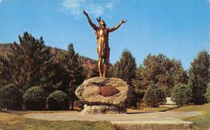USA Mass. Charlemont Indian Statue Hail to the Sunrise Mohawk Trail