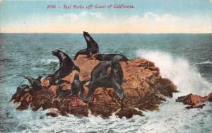 9531 Seal Rocks off Coast of California, seals on rock
