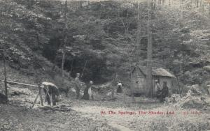 THE SHADES, Indiana, 1900-10s; At the Springs